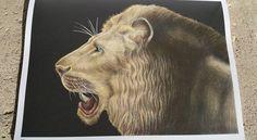 Lion (page 25) Caroline W.