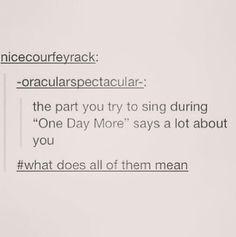 I sing Eponine, Javert, Enjolras, and Monsiuer Thenardier soooo