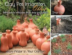 Olla Pots are now in stock again!  Get your own ancient irrigation system for your homestead and garden.