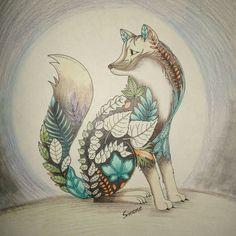 Raposa livro de colorir, Johanna Basford, jardim secreto e floresta encantada