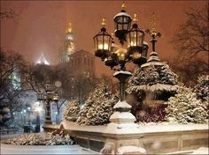 Magie d'une Nuit d'Hiver - Magical Winter Night - Tumblr