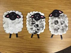 Sheep..cute for animal or farm unit.