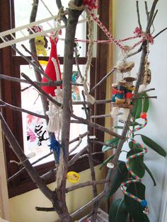 Here is a little break from puppy news… I recently built a fabulous play tree for my Quaker parrot Franklinand thought some of you might like to know how I did it. So here goes a brief description with pictures of course! First of all find a dead tree branch. I was lucky to find …