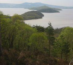 * Lago Lomond * # Sul das Highlands, Escócia.