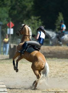 What should you do when your horse rears, and how do you stop it from becoming a habit?