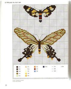Gallery.ru / Фото #26 - MARABOUT Insects - tatasha