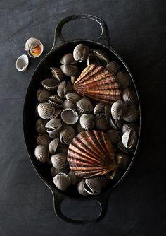 Shellfish, C4D, CGI, 3D