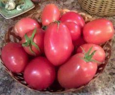 Edible Gardening in AZ.