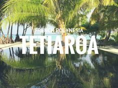 Tetiaroa, a coral reef quickly became one of the main tourist attractions in the…