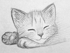 Art Drawings Sketches Simple, Easy Drawings, Drawing Ideas, Pencil Drawings, Pencil Art, Sketch Ideas, Drawing Tips, Kitten Drawing, Easy Cat Drawing