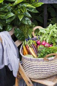 farmers' market fresh