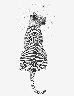 We have been doing phraseless illustrations for the past couple of weeks. This illustration is of a tiger gazing up at the stars of a universe much larger than itself. It is that hopeful curiosity we all have, wanting a life that fulfills our dreams and love for a larger life. Help us free these dreams of the North Koreans.