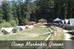 Jukaso Journeys introduces a new property - Camp Mashobra Greens.  #jukasojourneys #mashobra