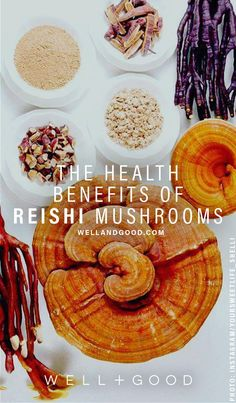 Reishi Mushrooms is a superfood that has a lot of benefits. Find out some of these benefits in the article! Turmeric Tea Benefits, Cucumber Benefits, Matcha Benefits, Lemon Benefits, Healthy Recipes, Mushroom Benefits, Mushroom Tea, Nutrition, Stuffed Mushrooms