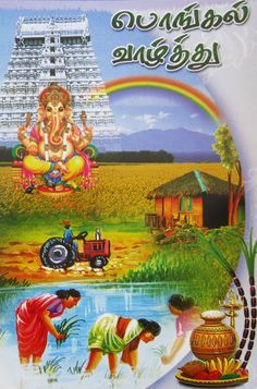 Pongal Wishes In Tamil, Happy Pongal Wishes, Happy Wishes, Pongal Festival Images, Pongal Images, Tamil New Year Greetings, Pongal Greeting Cards, Happy Makar Sankranti Images, Pongal Celebration