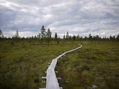 Lillhärjåbygget, Sweden's only remaining farm on roadless land.  Powered by solar panels and maintained by the same family for 5 generations, the farm sits a 7km hike from the nearest dirt road