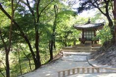 Changdeokgung - Huwon (Rear Garden)