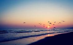 amazing sunset wallpapers 28995