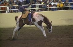 Rodeos and bucking horses, or races are no longer a part of San Juan's Day.