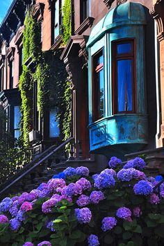 Townhouse dreams with ivy, greened copper bow windows, and hydrangeas.