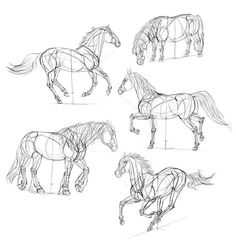 Easy horse drawing step by step how to draw horses step-by-step instructions Easy Horse Drawing, Horse Drawings, Animal Drawings, Drawing Animals, Horse Drawing Tutorial, Creature Drawings, Animal Sketches, Drawing Sketches, Drawing Tips