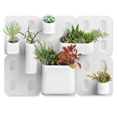 Although this wall-mounted system works beautifully as a planter for hardy succulents, it's got oodles of potential as a storage system throughout the home. Garden planter: Urbio Big Happy Family kit, $175, EQ3.