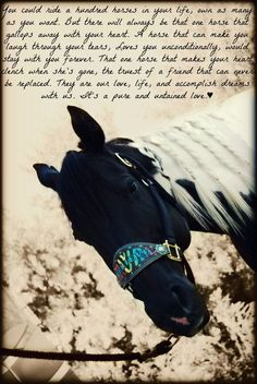 Barrel racing mare<3 couldn't live without