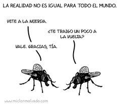 #animallovers #funnyvideos #mosquito #pets #animals http://www.petsfabulosas.com/por-que-es-tan-dificil-acabar-con-un-mosco-a-punto-de-picarnos-o-una-mosca-que-molesta-mucho