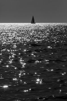 If my Bark sink | 'Tis to another sea — | Mortality's Ground Floor | Is Immortality —  Emily Dickinson  [Credit- Sailing by Enzo D.]