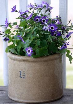 crock with flowers