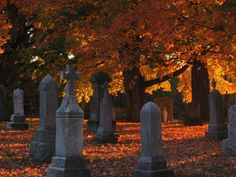Google Image Result for http://lancemannion.typepad.com/photos/uncategorized/2008/10/31/catholic_graveyard.jpg