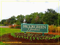 Brookgreen Gardens a magical place to visit in Murrells Inlet, SC. from snowbirdrvtrails.com. Murrells Inlet, Day Trips, South Carolina, Places To Visit, Gardens, Tuin, House Gardens, Garden
