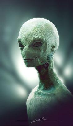 Alien 1, Soren Zaragoza on ArtStation at http://www.artstation.com/artwork/alien-1-5abc8e5c-c9a7-42e2-8d94-4e4484050b08