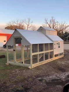 Chicken Coop Ideas 769341548834565904 - Source by Chicken Barn, Easy Chicken Coop, Diy Chicken Coop Plans, Chicken Life, Chicken Coop Designs, Backyard Chicken Coops, Building A Chicken Coop, Chicken Runs, Raising Backyard Chickens