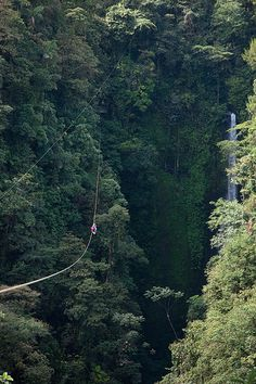 Zip lining in the rainforests of Costa Rica.