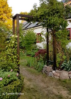 Garden Trellis, Garden Fencing, Garden Paths, Growing Gardens, Small Gardens, Outdoor Gardens, Backyard Projects, Garden Projects, Landscape Design
