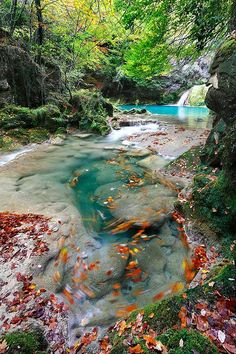 Urederra River, Basque Country, Spain