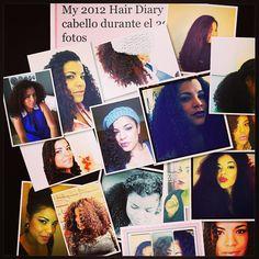 My 2012 Hair diary