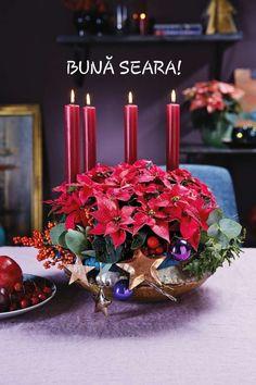 Christmas Poinsettia, Christmas Star, Christmas Colors, Christmas Themes, Christmas Decorations, Table Decorations, Birthday Candles, Bloom, Fancy