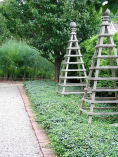 tuteurs...a soaring trellis for Clematis, Sweet Peas, Morning Glories, or other flowering vines