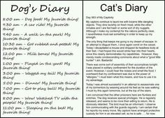 This is Awesome... Why I love dogs!!
