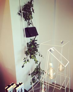 www.l-ismore.be window styling / decoration & green