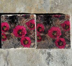Desert Stone Photo Coasters - Desert Cactus Flower Coasters - Fuschia Cactus Flower Coasters - Desert Gifts - Ready to Ship by DeniseBruchmanPhoto on Etsy