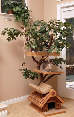 next cat tree for sure! Creative and Beautiful Cat Tree House from Pet Tree House - Modern Homes Interior Design and Decorating Ideas on Decodir Cat Tree Designs, Tree House Designs, Bed Designs, Cool Cat Beds, Cool Cats, Real Wood Furniture, Cat Furniture, Furniture Ideas, Furniture Design