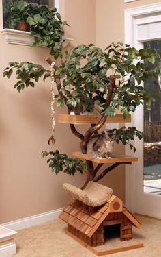 pthmediumtree.jpg (300×477)