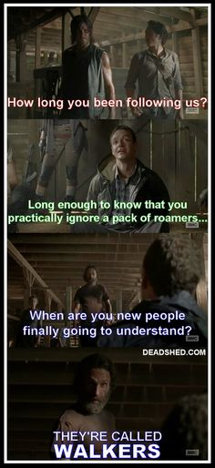Seriously, they're called walkers!
