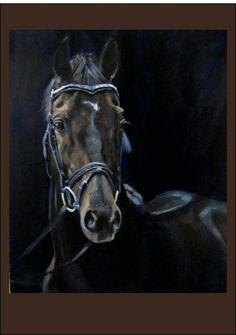 dark horse by jackie hardman