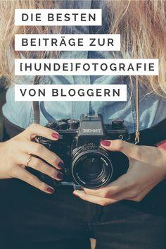 Die besten Beiträge zur [Hunde-] Fotografie von Bloggern - immer brandneu.