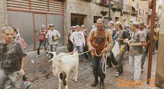 Bulleros de Murcia: Fiestas y Peñas  7 Octubre - Ya es una tradición que el Cuqui pasee la cabra por el pueblo el día de la Diana,  dando comienzo a las fiesta de la patrona Virgen del Rosario. La cabra después de terminar el paseo vuelve a su corral.