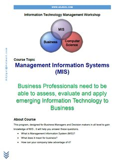 Management Information Systems (MIS) Course